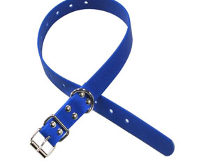 Blue hunter training collar made from plastic coated webbings